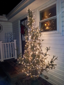 My Charlie Brown Tree