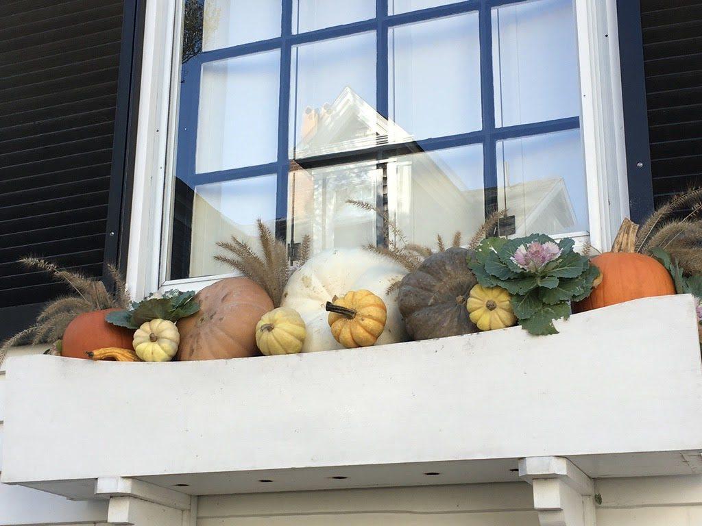 LZ- Pumpkin paradise